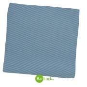 Audinys nerūdijančio plieno paviršiams valyti, (BacLock®)