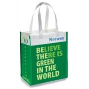 Pirkinių krepšys – žalias